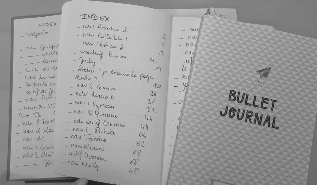 index bullet journal, sommaire bujo