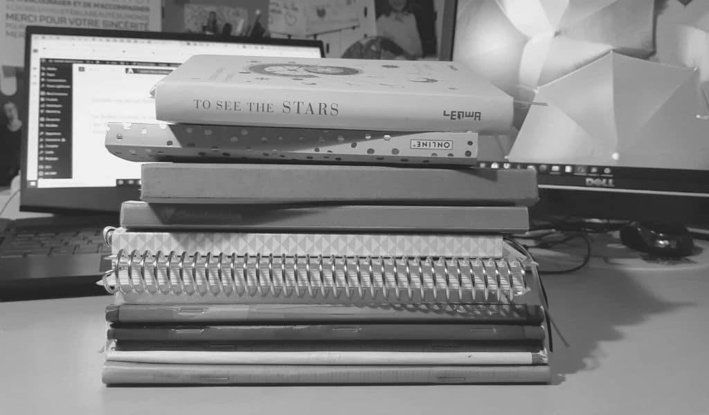 bullet journal, nathalie marechal laine, carnets, bujo